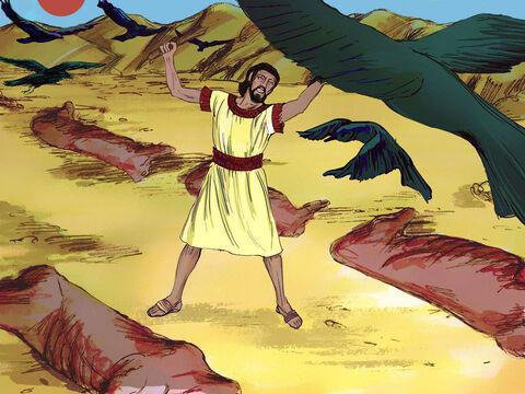 [בתמונה: הברית בין הבתרים... המקור: free bible images]